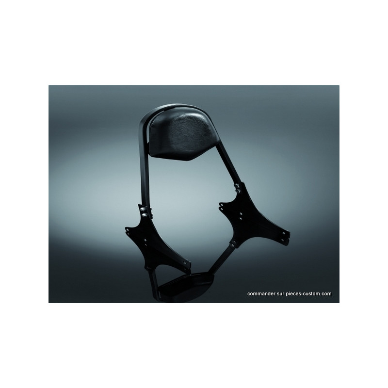 Sissy Bar Large Deluxe Noir VTX1300 CX, Fury